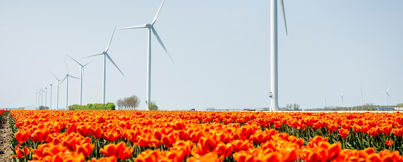 Vattenfall julkistaa suuren tuulivoimasopimuksen